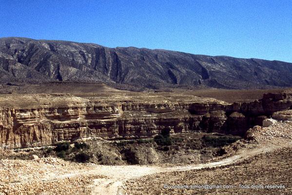 [041-1978-25] Massif de l'Aurès