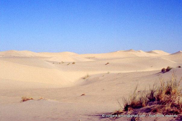 [044-1978-38] El Oued