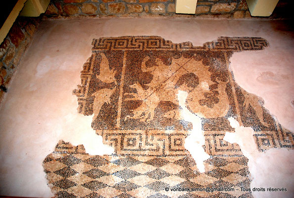 [NU900-2012-049] Paphos (Nea Paphos) : Villa de Dionysos - Mosaïque de Scylla [1]