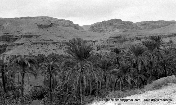 [NB049-1978-42] Menaa et ses environs