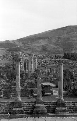[NB059-1978-17] Djemila (Cuicul) : Temple Septimien