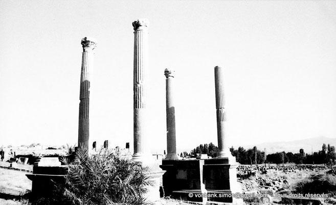[NB038-1978-02] Timgad (Thamugadi) : Porte de Mascula (extrémité Est du Decumanus maximus)