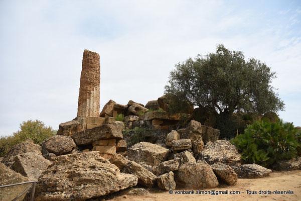 [NU906-2019-1585] Agrigente - Temple d'Héraclès (Hercule) : Colonne de la face Nord (vue depuis le côté Ouest du temple)
