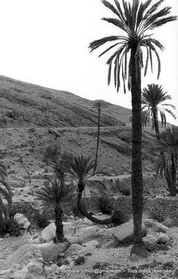 [NB006-1981-29] Menaa et ses environs