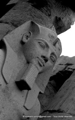 [NB079-1973-11] Louxor - Temple d'Amon-Rê : Statue (Ramsès II)