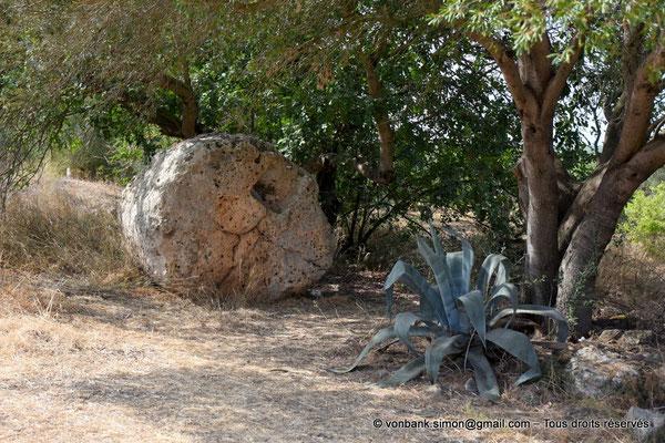 [NU906-2019-1529] Cave di Cusa : Tambour de colonne en attente de transport