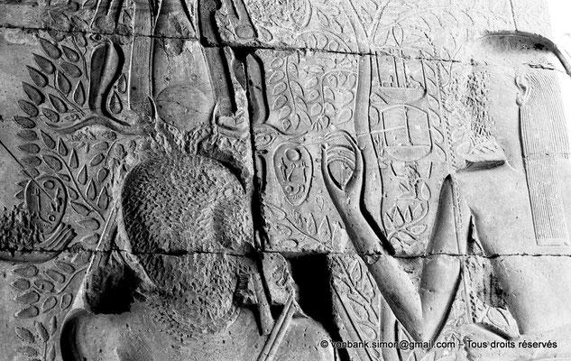 [NB086-1981-29] Ramesseum : Salle des barques - Seshat inscrit le nom de couronnement de Ramsès II sur un avocat, fruit du perséa (détail)