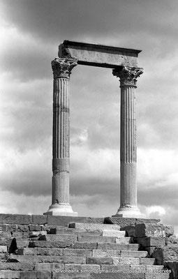 [NB035-1978-23] Timgad (Thamugadi) : Temple du Génie de le Colonie
