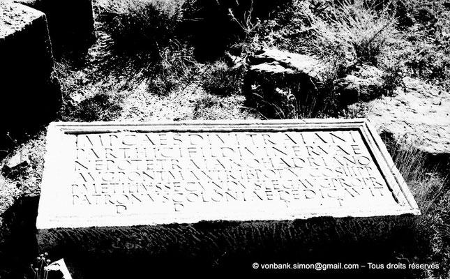 [NB038-1978-03] Timgad (Thamugadi) : Porte de Mascula - Au sol, pierre dédicacée