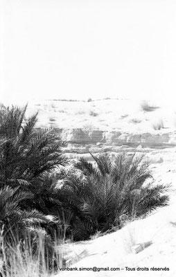 [NB091-1978-17] El Oued