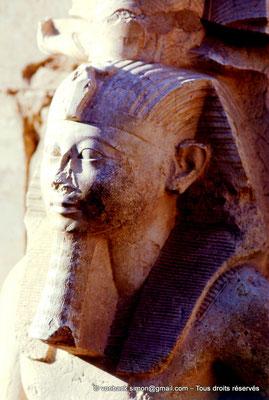[080-1973-34] Karnak - Ipet-Sout : Amenhotep II