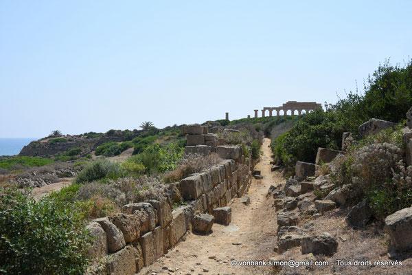 [NU906-2019-1511] Sélinonte : Fortifications intérieures du côté Est - En arrière-plan, ruines du temple C