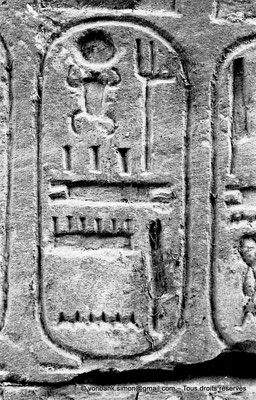 [NB077-1973-34] Karnak - Temple de Séthi II : Cartouche de Séthi II