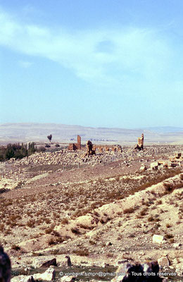 [006-1983-25] Henchir Mdeïna (Althiburos) : Successivement, ruines de maisons, du théâtre puis, sur la gauche, du Capitole