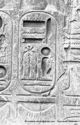 [NB079-1973-16] Louxor - Temple d'Amon-Rê : Cartouche pharaonique (titulature de Ramsès II)