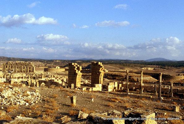 [008-1983-02] Haïdra (Ammaedara) : Église de l'évêque Melleus -Basilique I-