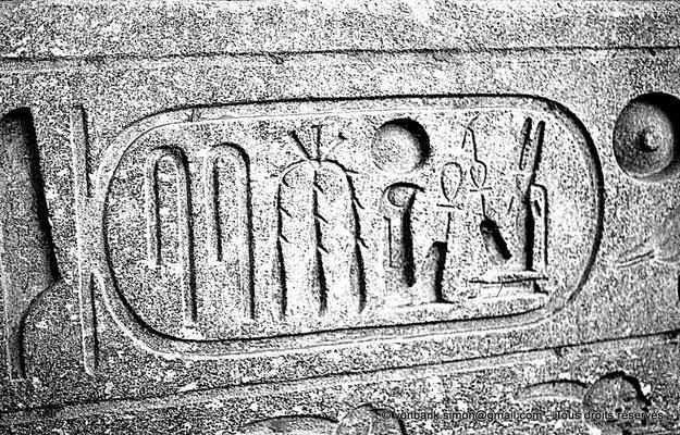 [NB079-1973-00] Louxor - Temple d'Amon-Rê : Cartouche pharaonique (titulature de Ramsès II)