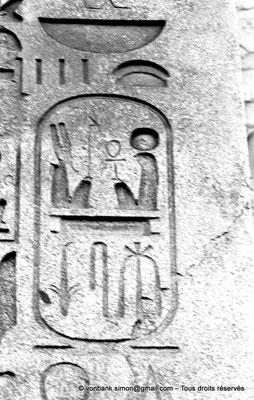 [NB074-1973-56] Louxor - Temple d'Amon-Rê : Cartouche pharaonique (titulature de Ramsès II - Obélisque)