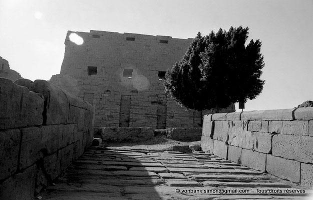 [NB077-1973-06] Karnak - Parvis du Temple : Rampe d'accès de Taharqa - En arrière-plan, le môle Sud du premier pylône