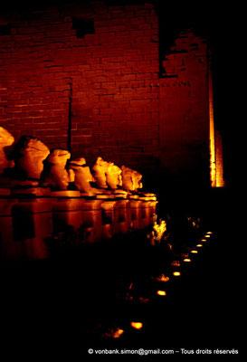 [081-1973-18] Karnak - Son et lumière : Parvis du Temple - Sphinx à tête de bélier (criocéphale) tenant entre leurs pattes une statue du pharaon