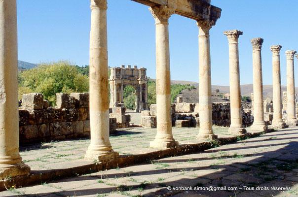 [001-1983-38] Djemila (Cuicul) : Place des Sévères (Nouveau forum) - Colonnade du portique Nord - En arrière-plan, l'arc de Caracalla