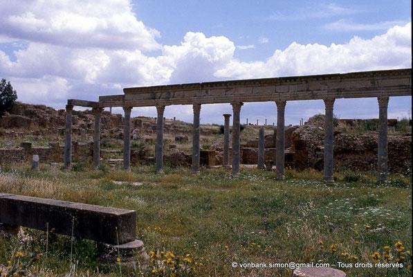 [009-1985-05] Henchir Kasbat (Thuburbo Majus) : Portique de la Palestre des Petronii