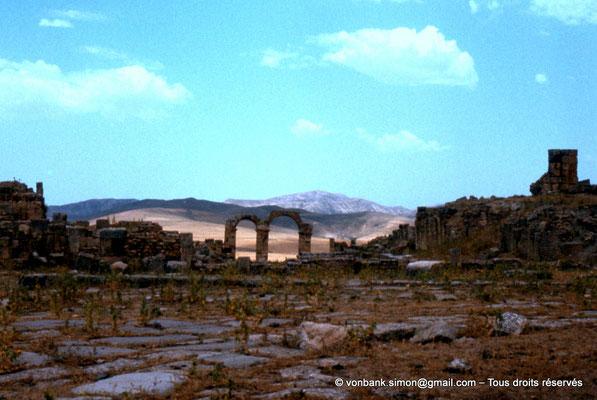 [022-1980-53] Khemissa (Thubursicu Numidarum) : Le nouveau forum avec en arrière-plan, l'arc à trois baies