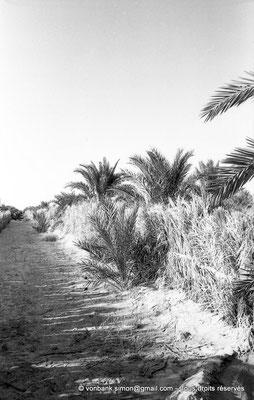 [NB091-1978-34] El Oued