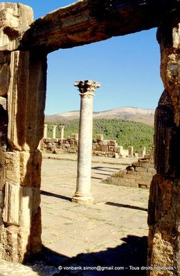 [001-1983-07] Djemila (Cuicul) : Cour du Temple de Venus Genetrix (vue partielle)