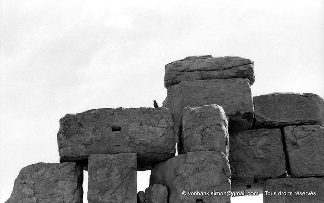 [NB056-1978-68] Timgad (Thamugadi) : Intérieur du fort - Détail de la muraille