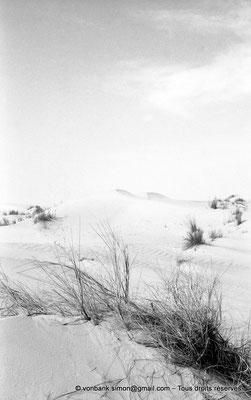 [NB005-1981-33] Désert - Dunes du grand erg oriental