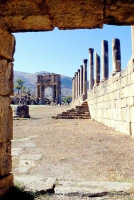 [001-1983-32] Djemila (Cuicul) : Place des Sévères (Nouveau forum) - Arc de Caracalla et Portique Nord (vue prise depuis une porte du mur Est de la place)