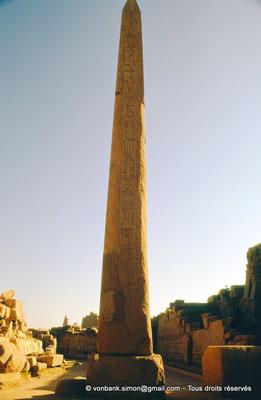 [088-1973-44] Karnak - Ouadjyt : Obélisque Sud situé devant l'entrée du pylône IV (Thoutmôsis Ier)