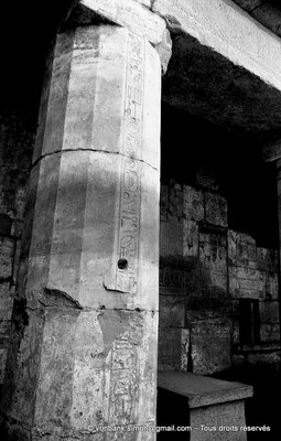 [NB075-1973-62] Karnak - Temple de Ptah : Cour - Colonne Nord (Thoutmosis III)