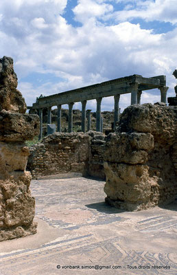[009-1985-08] Henchir Kasbat (Thuburbo Majus) : Portique de la Palestre des Petronii vu depuis les thermes d'été