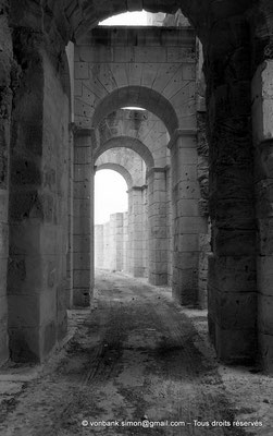 [NB011-1981-27] El Djem (Thysdrus) : Amphithéâtre
