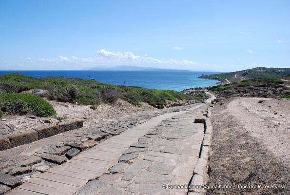 [NU904-2015-204] Tharros (Sardaigne) : Depuis la colline Su Muru Mannu, vue sur le Cardo maximus descendant en direction de la mer