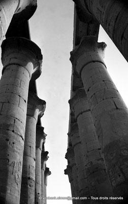 [NB079-1973-20] Louxor - Temple d'Amon-Rê : Colonnade de 14 colonnes papyriformes à chapiteaux ouverts de 14 mètres de hauteur (Aménophis III)