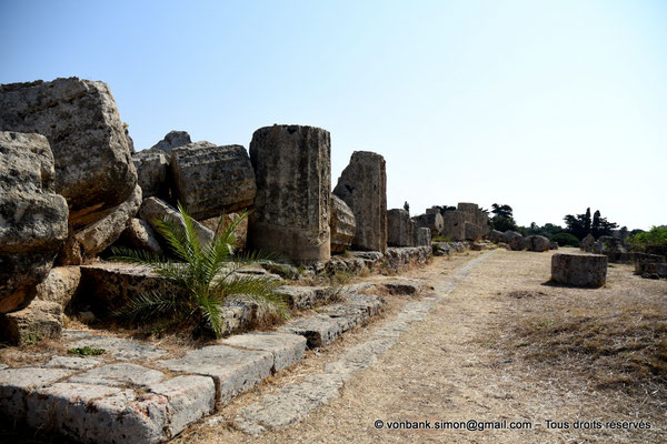 [NU906-2019-1436] Sélinonte - Temple F : Ruines