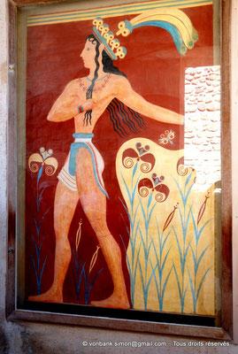 [NU905-2011-173] Cnossos (Crète) : Fresque dite « Prince aux lys »