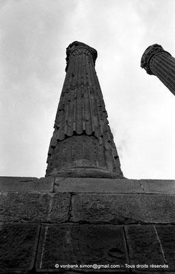 [NB024-1978-41] Timgad (Thamugadi) : Le Capitole