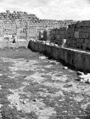 [NB042-1978-02] Timgad (Thamugadi) : Intérieur du fort - Piscine - Au fond à droite, petits thermes de l'état-major