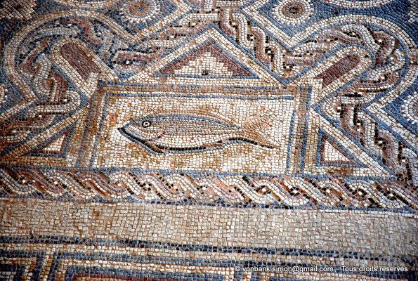 [NU900-2012-010] Kourion (Curium) : Maison d'Eustolios - Détail du grand panneau de mosaïques au sol représentant des symboles chrétiens
