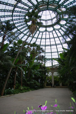 [NU900c-2012-0240] B - Bruxelles - Laeken : Serres royales - Jardin d'hiver - La coupole