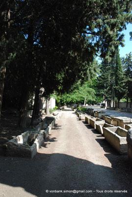[NU001i-2018-0011] Arles - Les Alyscamps : Allée de sarcophages