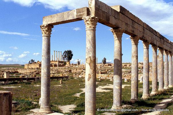 [005-1984-01] Henchir Kasbat (Thuburbo Majus) : Portique de la Palestre des Petronii - En arrière-plan, le Capitole