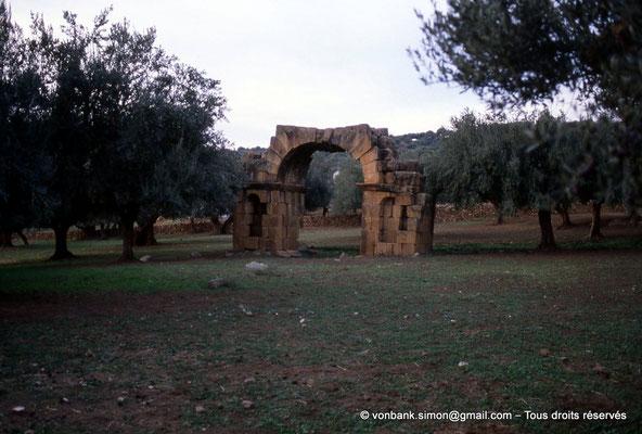 [006-1983-22] Sidi Ali-Bel-Kassem (Thuburnica) : Arc de triomphe  dans l'olivaie