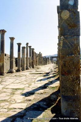 [001-1983-11] Djemila (Cuicul) : Cardo maximus bordé de colonnades - Face Nord de l'arc ouvrant sur la grande rue