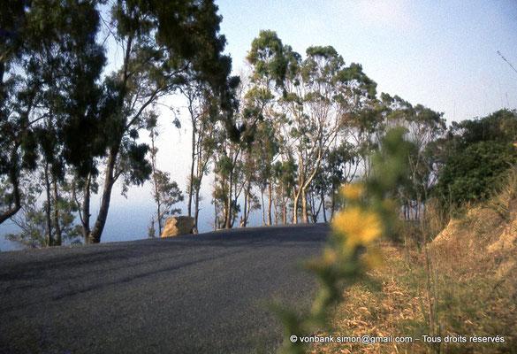 [073-1978-11] Sidi Rached : Depuis Tipasa, sur la route menant au Mausolée royal de Maurétanie