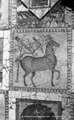 [NB011-1981-05] Carthage (Carthago) : Mosaïque des chevaux - Equipement d'un oiseleur, bâtons, cage et faucon (le nom du cheval était Auceps (oiseleur) ou Venator (chasseur))